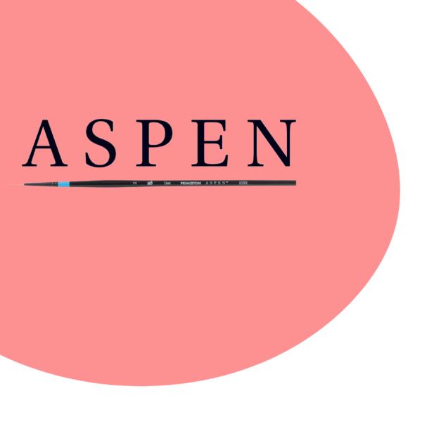 Princeton Aspen